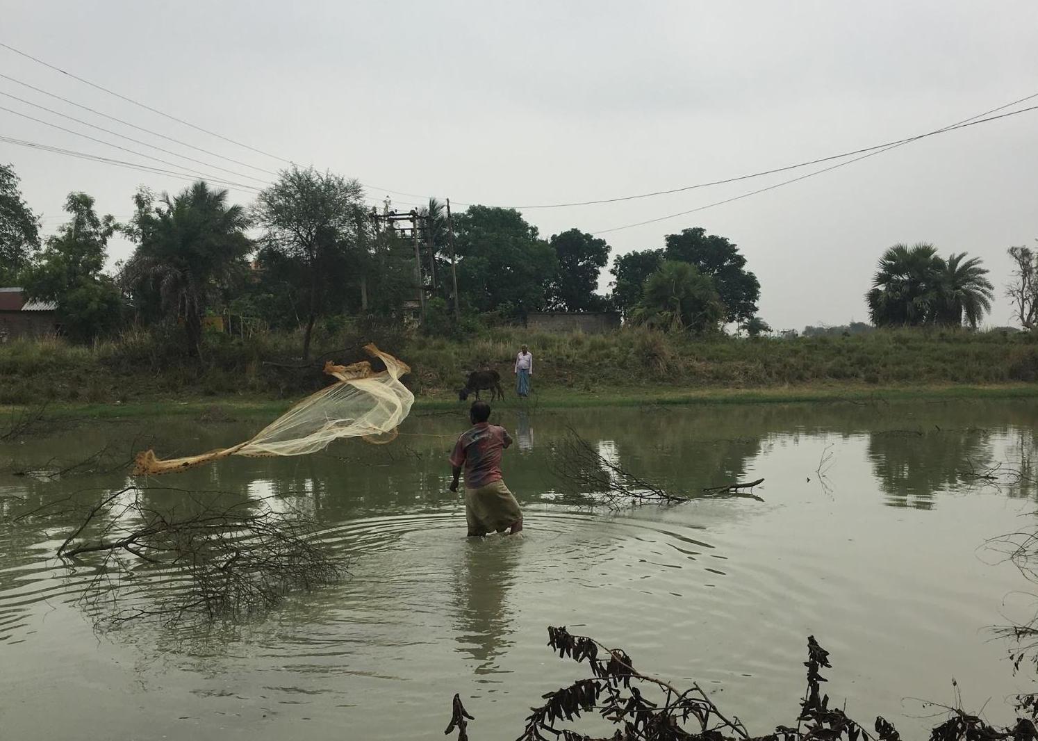 ベンガルの漁の様子